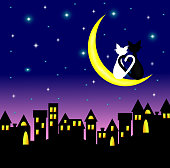 two cats in love sitting on the Crescent Moon above the city at night,lover couple,vector.