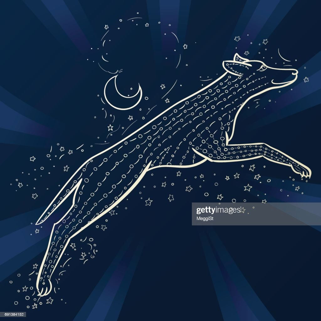 Two coyote. Vector doodle wolf. Chinese Horoscope 2018 - Year Of The Dog. Dark blue and white colors.