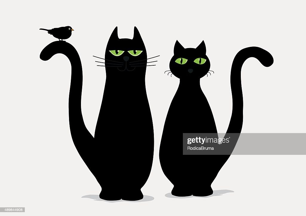 Two cute black cats and bird