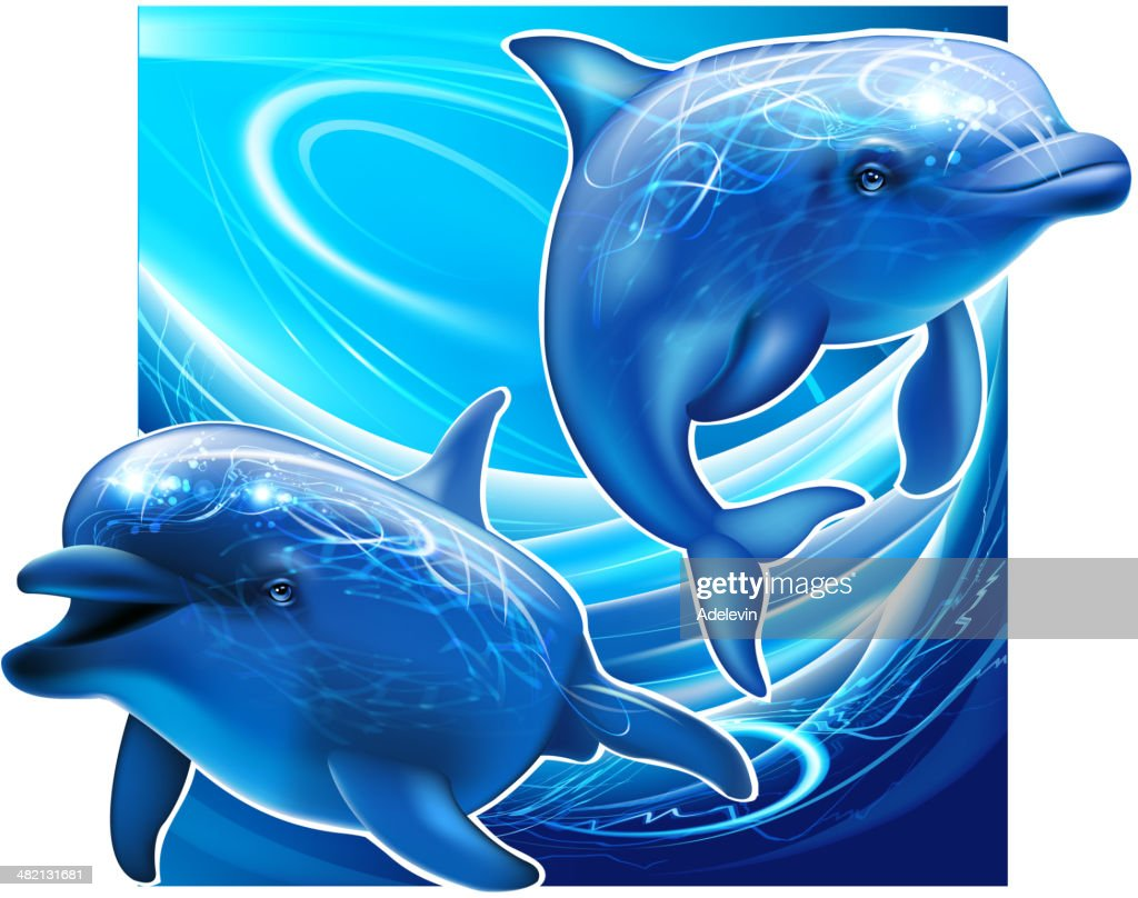 Two dolphins under sea