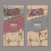 Two farm shop labels with color farmhouse, barn, cow and pig.