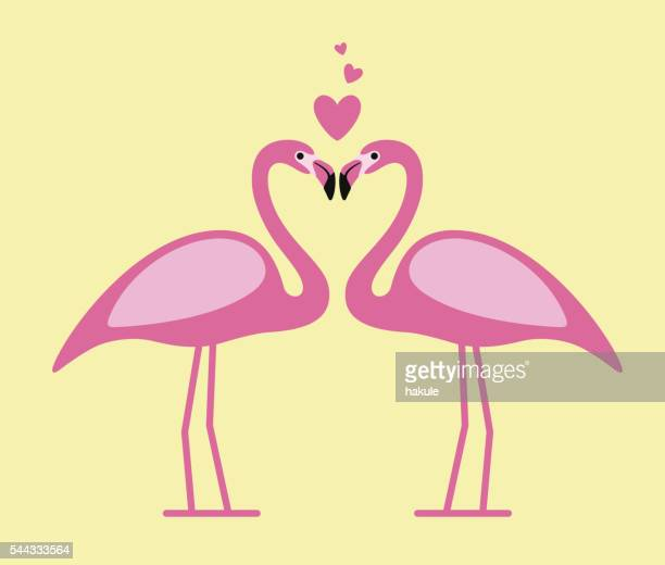 two flamingos face to face, lover, vector illustration - flamingo stock illustrations, clip art, cartoons, & icons