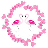 two flamingos in love vector illustration with pink hearts around them