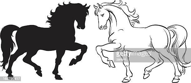 two horses facing each other, one black one white  - horse family stock illustrations, clip art, cartoons, & icons