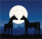 Two horses silhouette at night with romantic moon