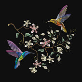 Two humming birds and blossoming cherry embroidery on black background. Cherry blosoom and tropical humming bird vector. Decorative floral sakura tree embroidery