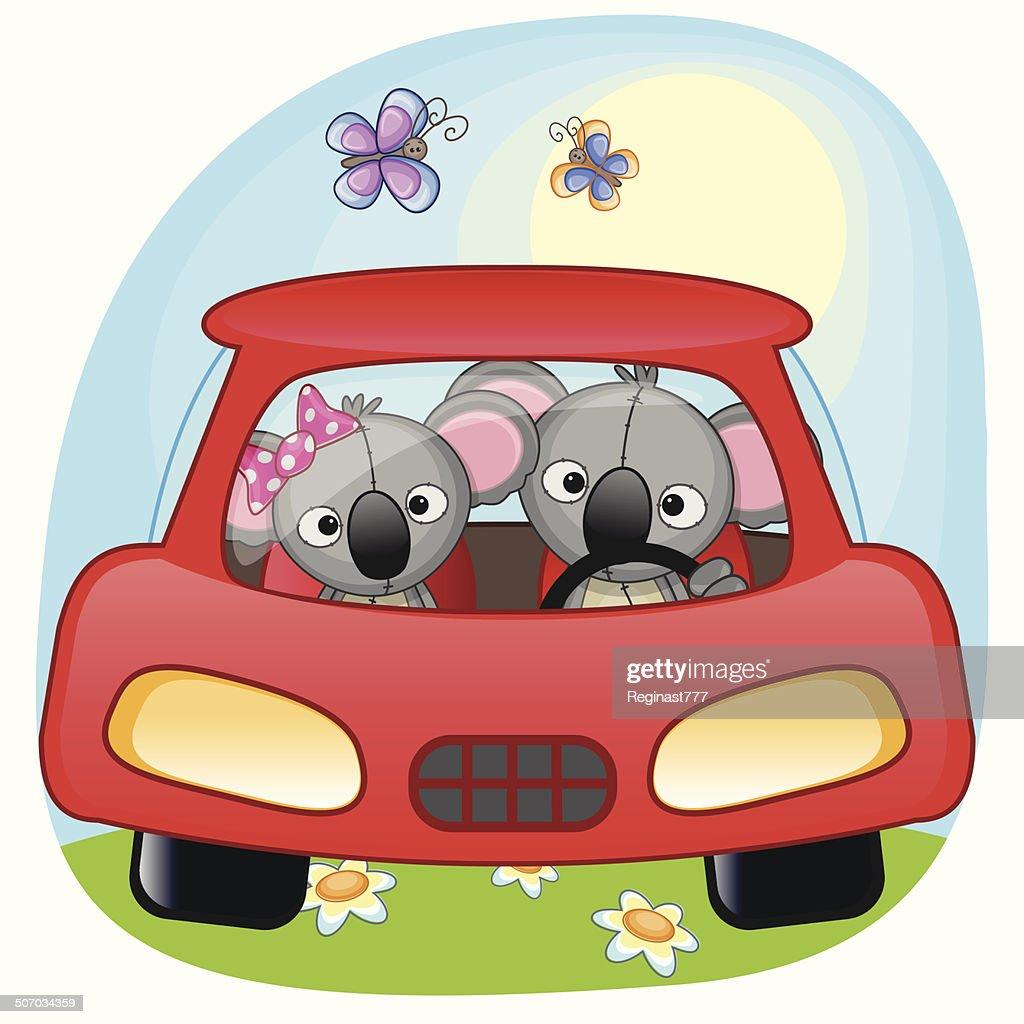Two Koalas in a car