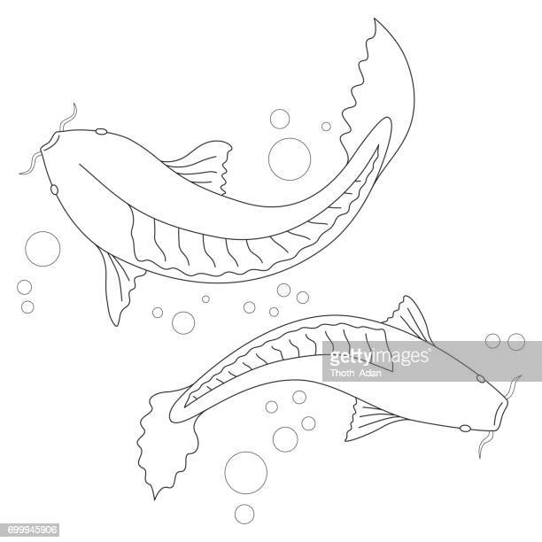 koi carp vector art and graphics getty images
