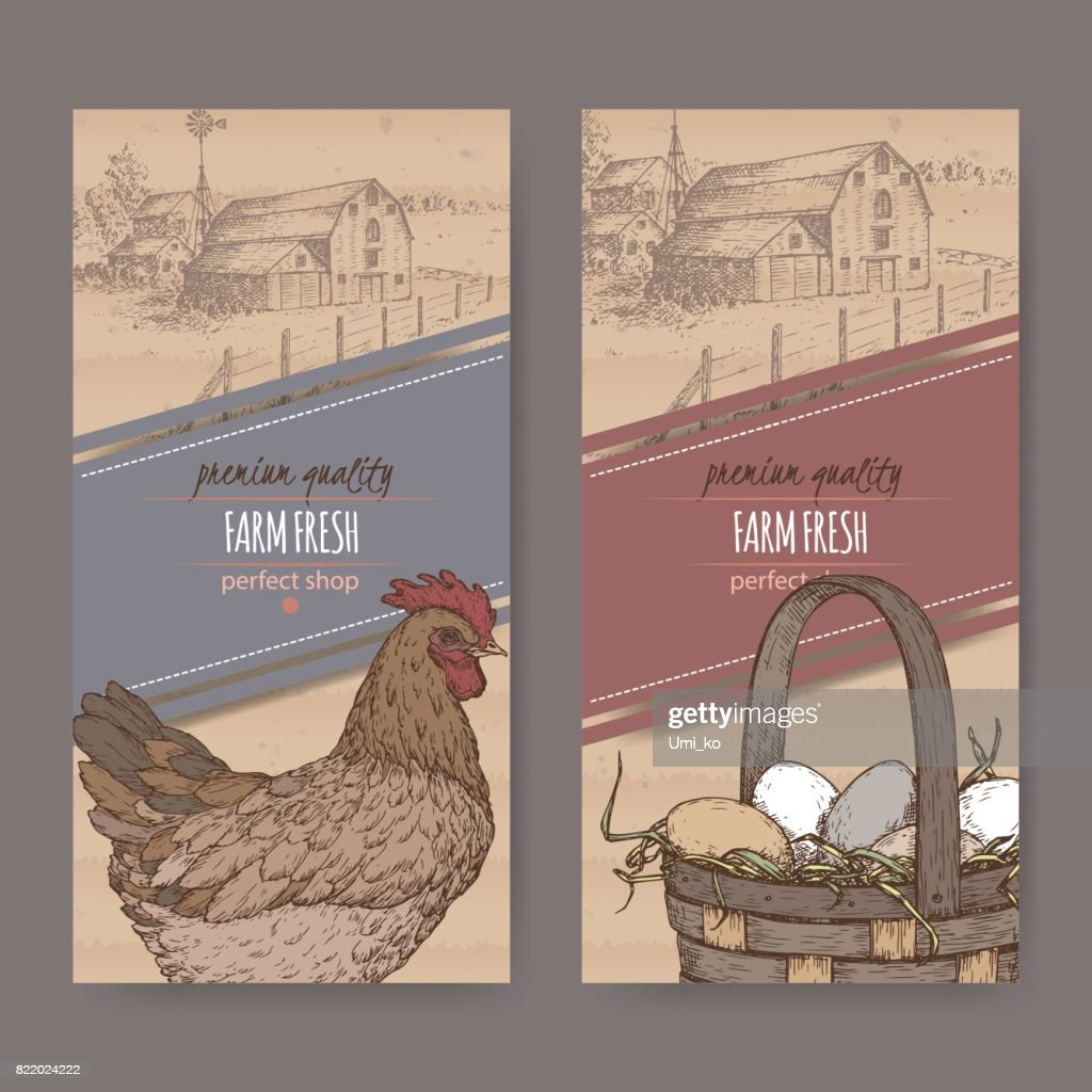 Two labels with farmhouse, color chicken and eggs on cardboard texture.