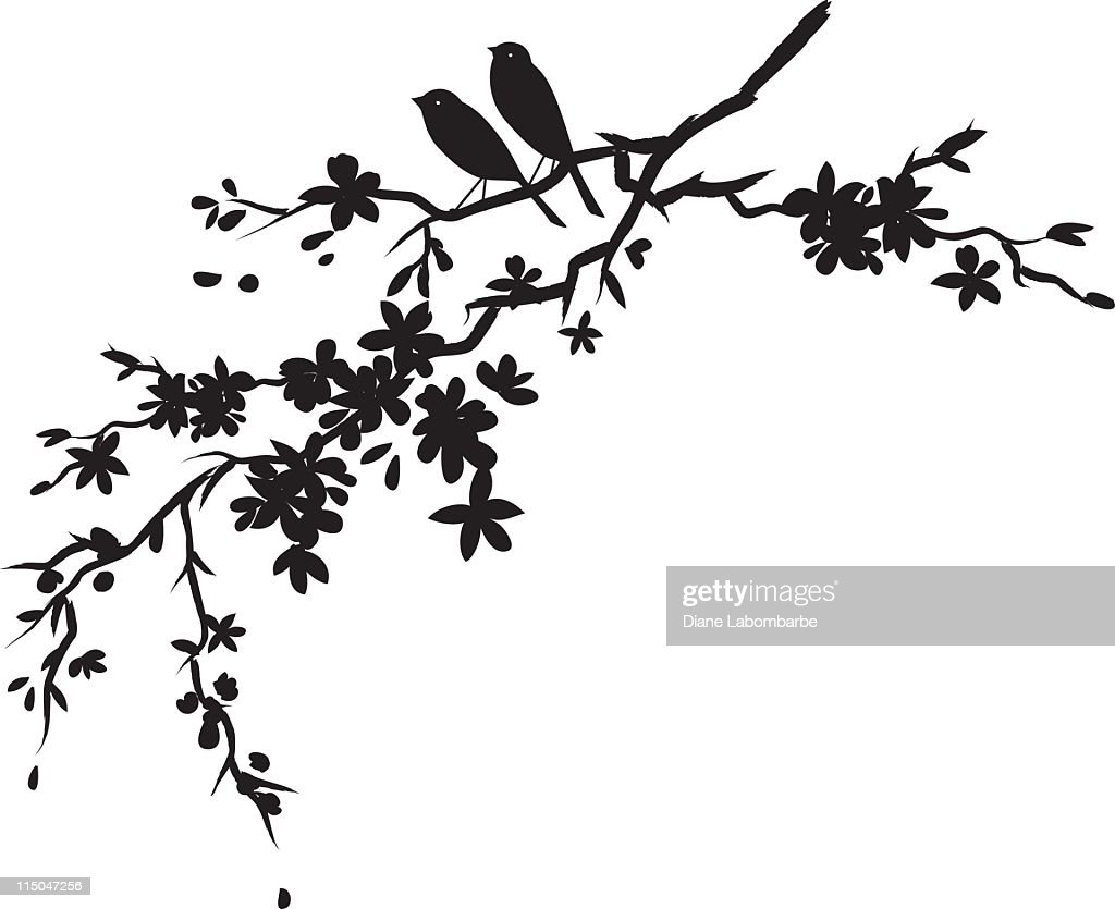 two little birds sitting on cherry blossoms branch black