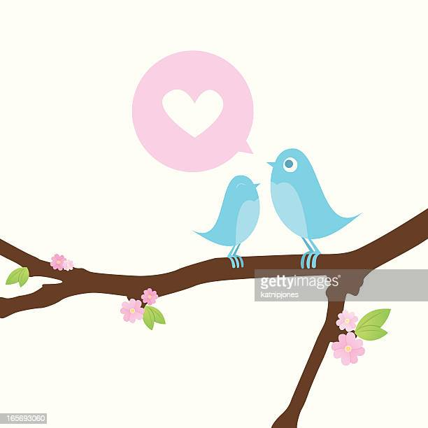 ilustrações de stock, clip art, desenhos animados e ícones de duas pequenas aves amor - canto de passarinho