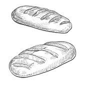 Two loaves isolated on white background. Vector illustration of a sketch style.