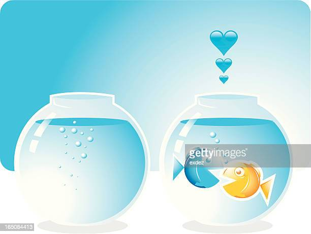 two loving fishes