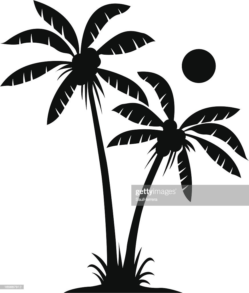 Two palms in black and white