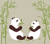 Two pandas eat bamboo in the bambоо forest