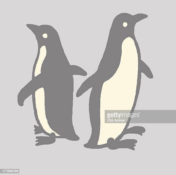 60点のペンギンのイラスト素材クリップアート素材マンガ素材