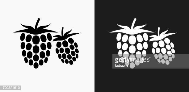 two raspberries icon on black and white vector backgrounds - raspberry stock illustrations, clip art, cartoons, & icons