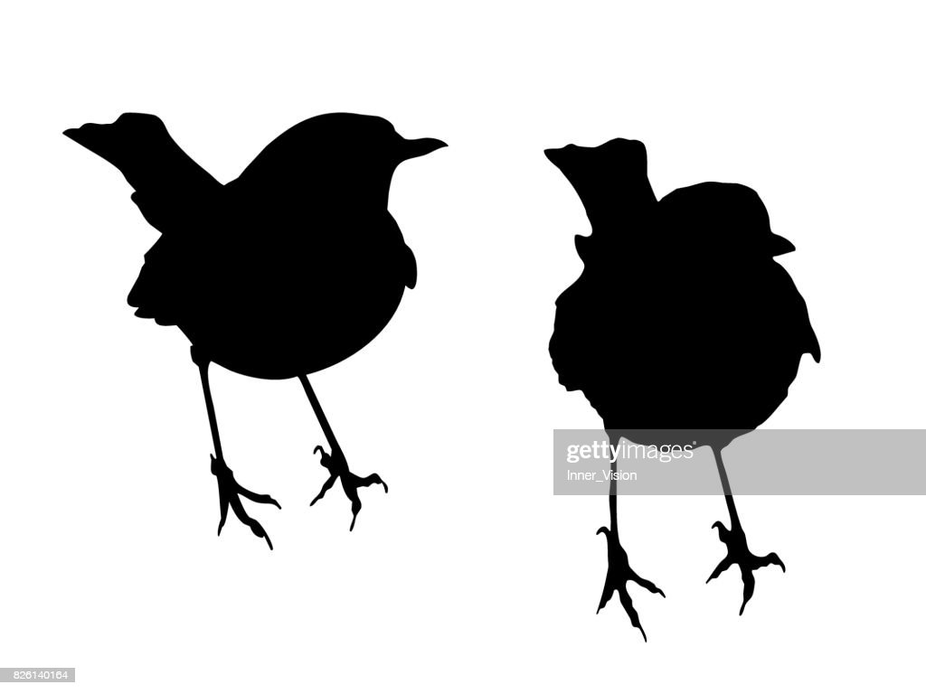 Two Robins - Shape Vectors