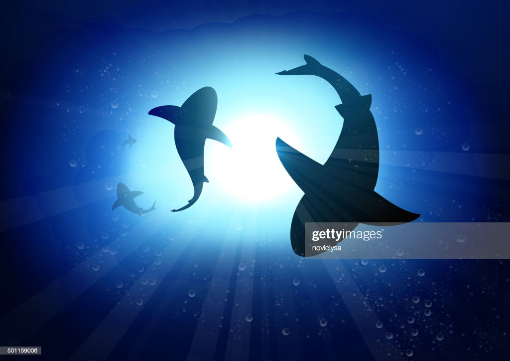 Two sharks in the underwater background