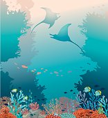Two stingrays, coral reef and sea. Underwater vector.