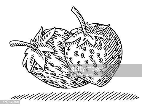 two strawberry fruits drawing vector art getty images