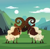 Two stubborn angry ram sheep characters quarreling