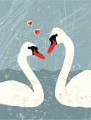 Two Swans in Love with Hearts