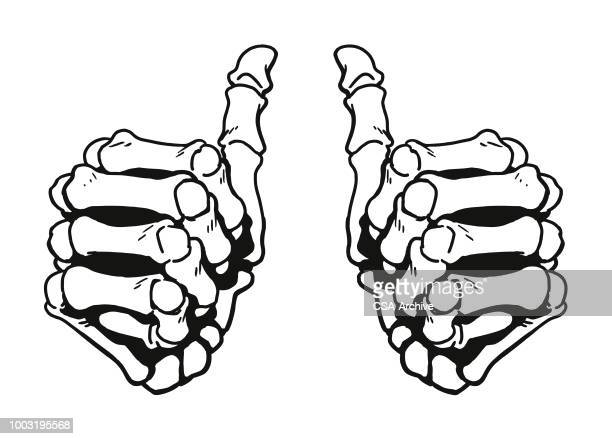 two thumbs up - skeleton stock illustrations, clip art, cartoons, & icons