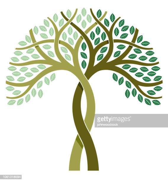 two tone tree illustration - tree trunk stock illustrations