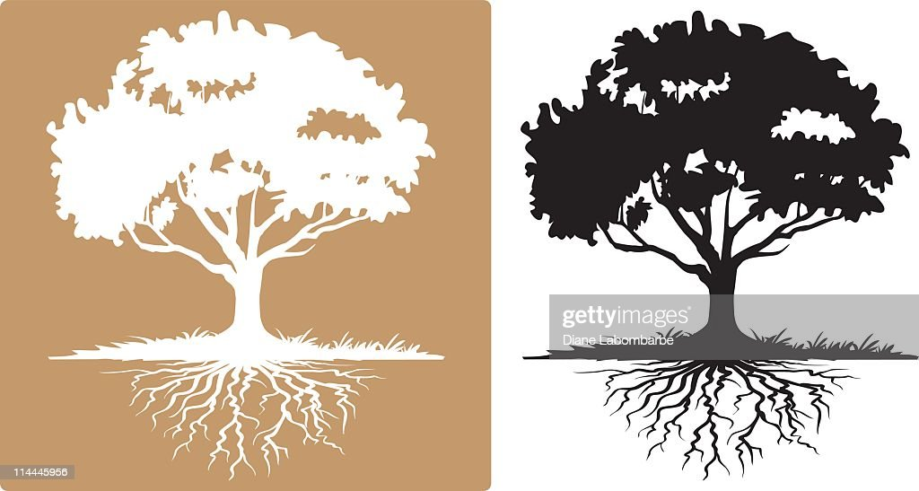 Two Tree with Visible Roots White and Black Silhouettes : stock illustration