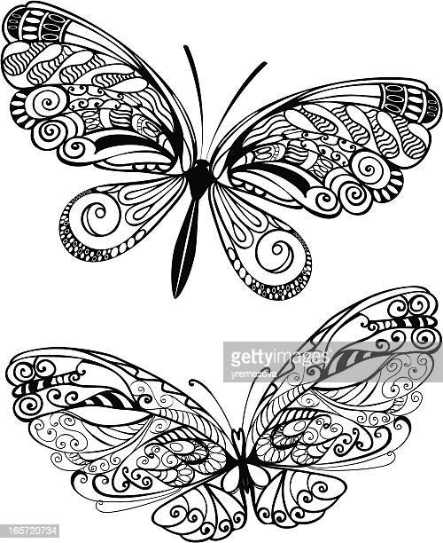 Two vector designs of beautiful butterflies