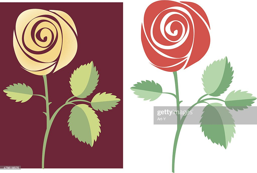 Two vector roses : Vector Art