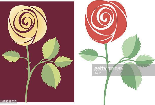 Two vector roses