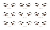 Types of woman eyes collection. Set of vector eye shapes.