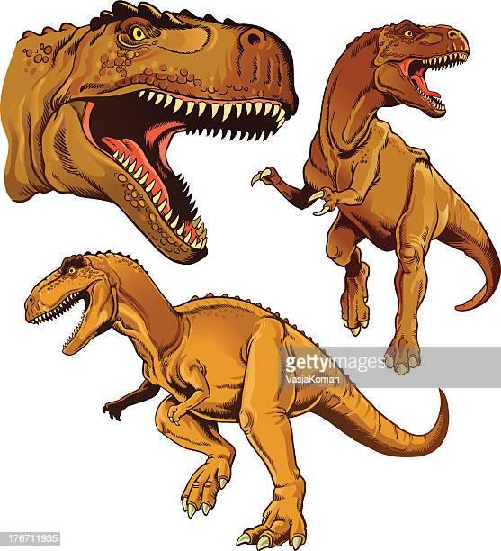 ilustrações de stock, clip art, desenhos animados e ícones de tyrannosaur conjunto de três - dinossauro desenho