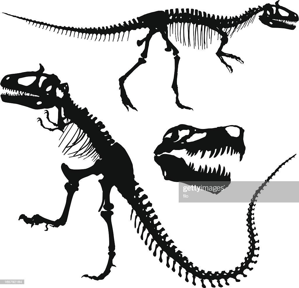 Tyrannosaurus Rex : stock illustration