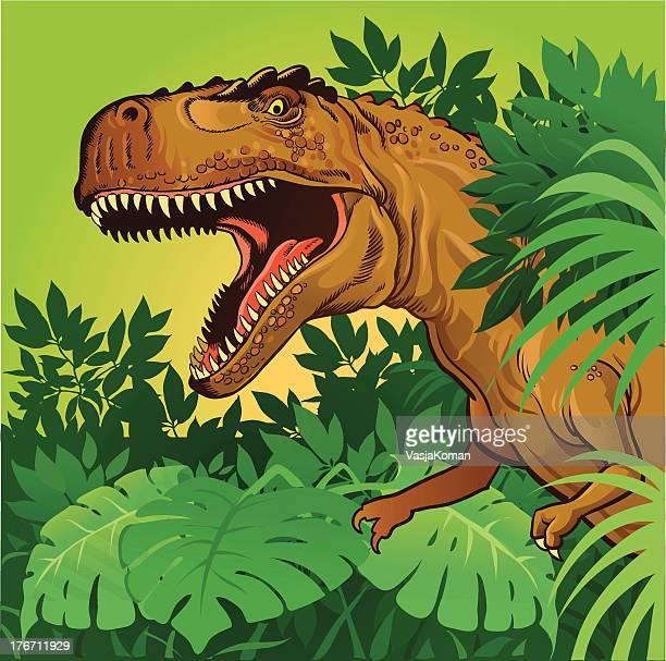 tyrannosaurus rex - dinosaur stock illustrations