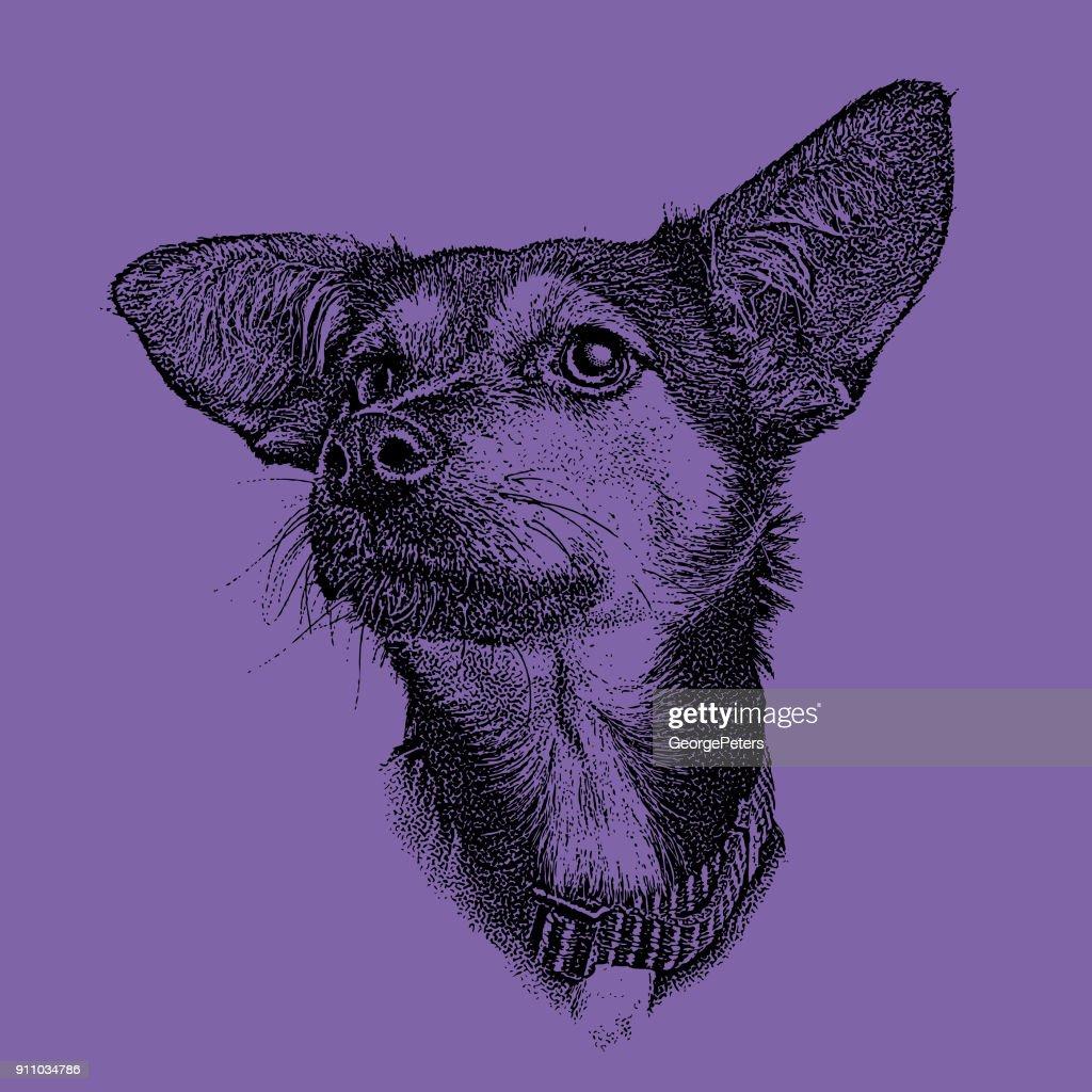 Ultra violet mezzotint of a sad German Shepherd Hound mixed breed dog : stock illustration