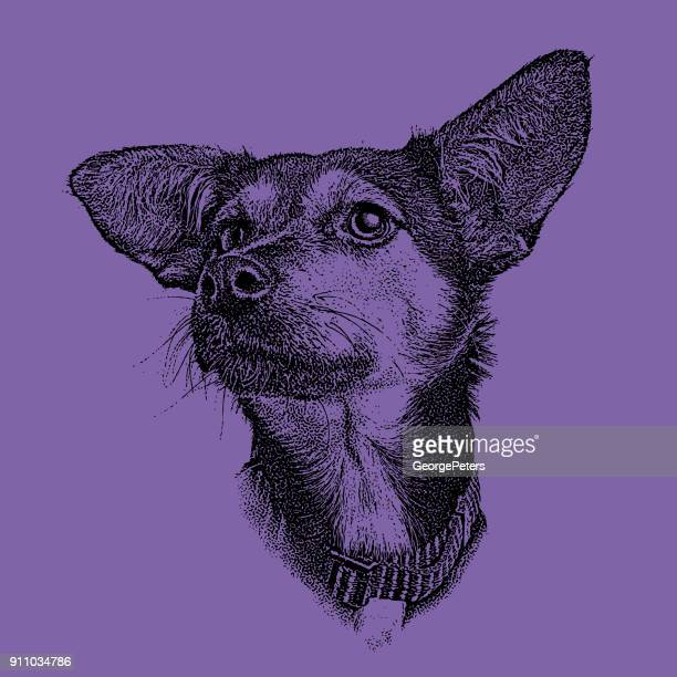 Ultra violet mezzotint of a sad German Shepherd Hound mixed breed dog