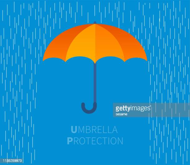 stockillustraties, clipart, cartoons en iconen met paraplu - rain