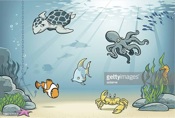 under the sea - green turtle stock illustrations, clip art, cartoons, & icons