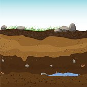 Underground layers of earth, groundwater,layers of grass.Vector Illustration.