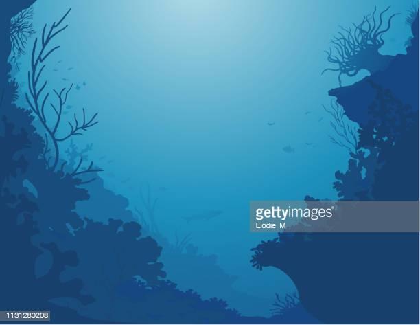 undersea background/decor de la mer - acanthuridae stock illustrations, clip art, cartoons, & icons