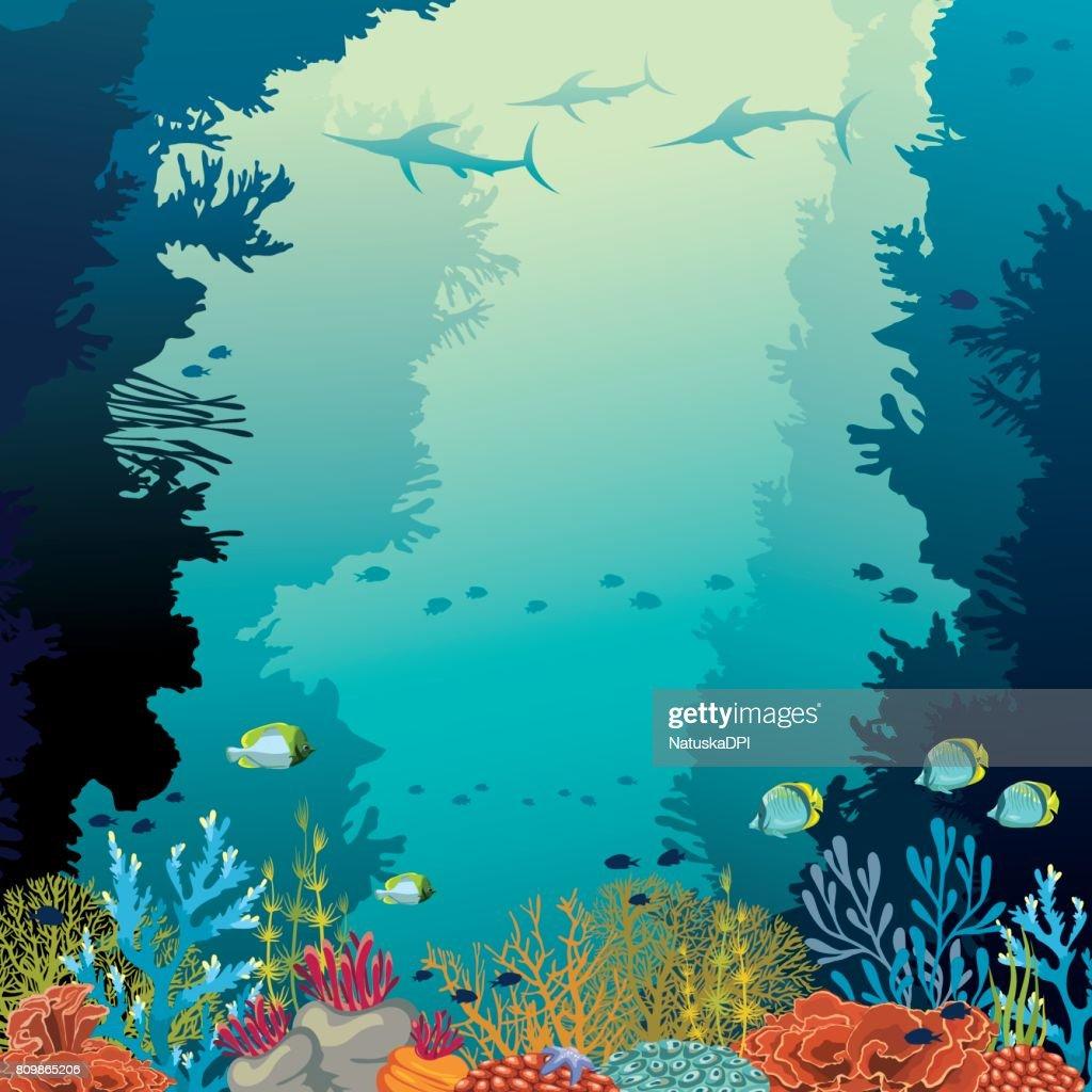 Underwater coral reef, marlines and sea.