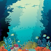 Underwater coral reef, marlines and sea.