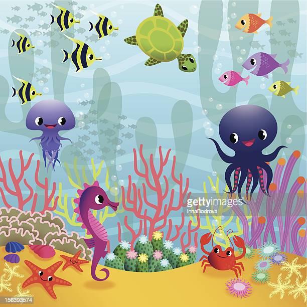 Underwater life.