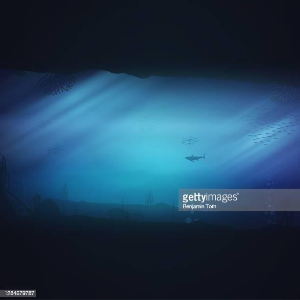 underwater ocean scene background of reefs. - cnidarian stock illustrations