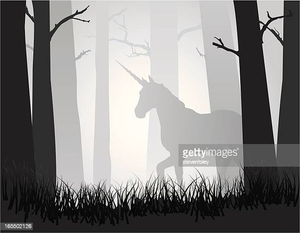 unicorn in the forest - unicorn stock illustrations