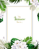 Universal invitation, congratulation card with green tropical palm, monstera leaves and magnolia blooming flowers on the white background. Holiday banner with place for message on the summer poster.