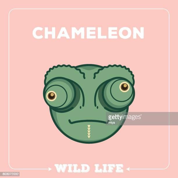 ilustraciones, imágenes clip art, dibujos animados e iconos de stock de carga-istock - camaleón